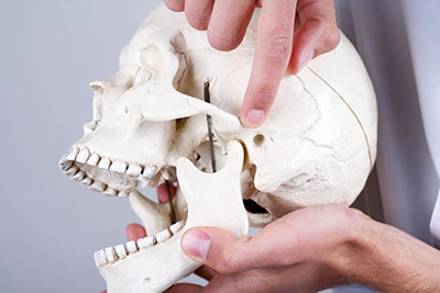 Dentist holding model of skull pointing out jaw bone with TMJ disorder at dentist office in Boise, ID.